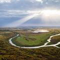 Васюганские болота глазами томского фотографа: томич «удивил» Россию